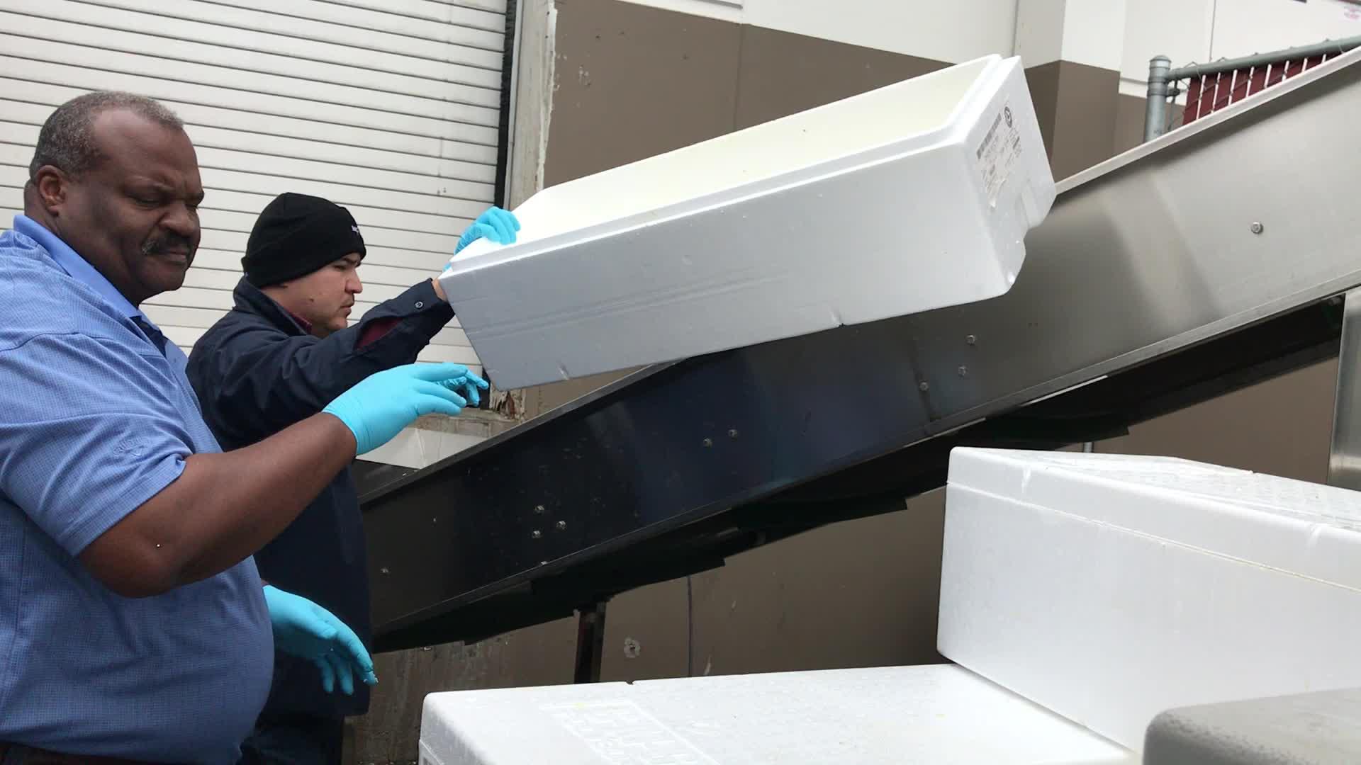 GREENMAX eps compattatore riciclare espanso eps scatole di pesci