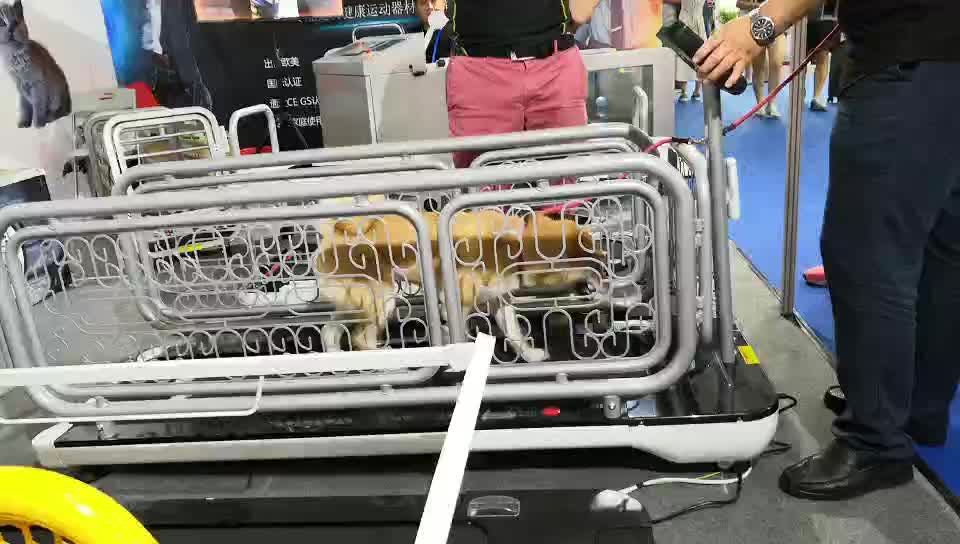 इलेक्ट्रिक पालतू कुत्ता ट्रेडमिल स्वीमिंग ट्रेडमिल के लिए मध्यम और छोटे कुत्तों