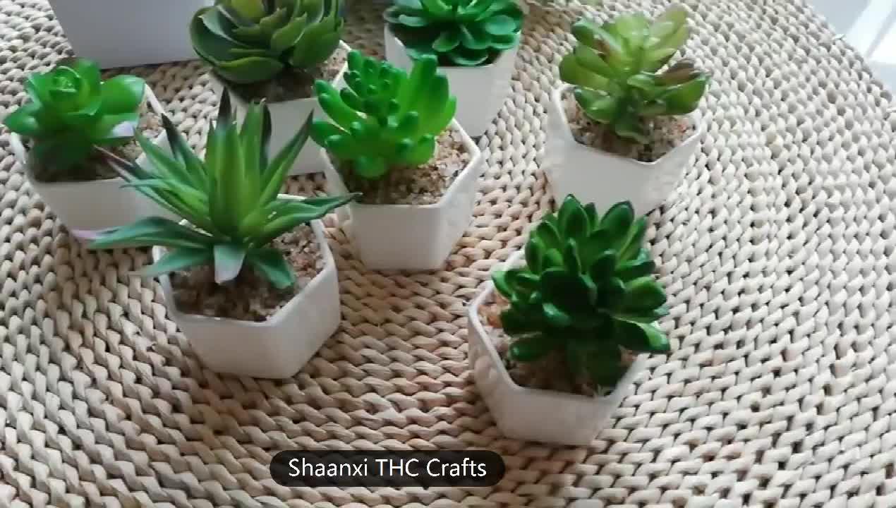Atacado Pequeno Artificial Plantas Suculentas Em Vasos para a Decoração Da Mesa