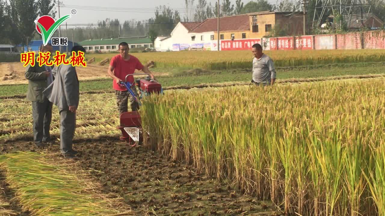 4GL90 China trator mingyue montado ceifeira cortador de trigo máquina no preço do paquistão colheitadeira de grama