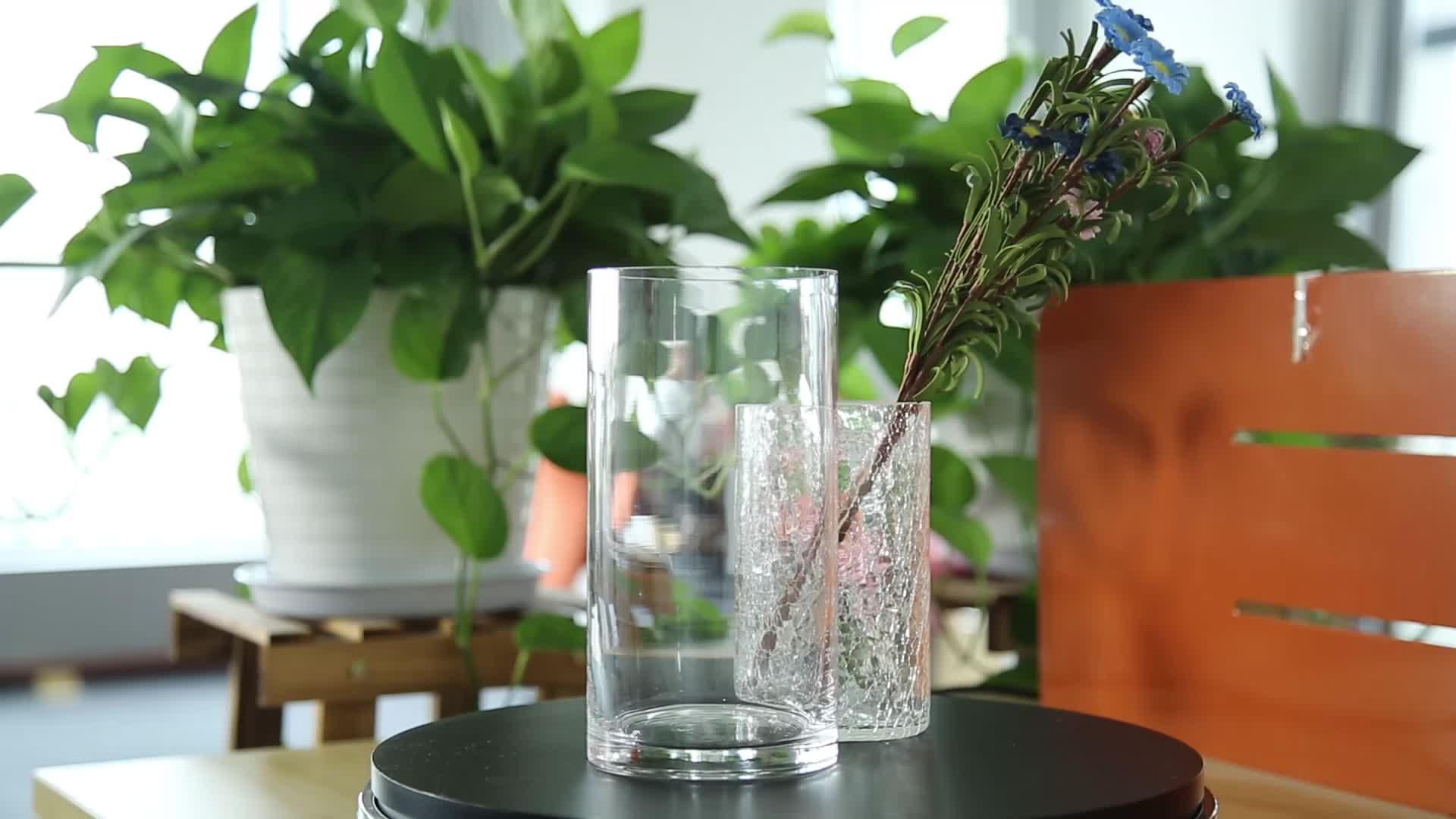 吹きクリア背シリンダーガラス花瓶