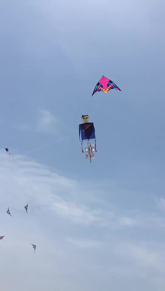 new design patented factory bicycle kite