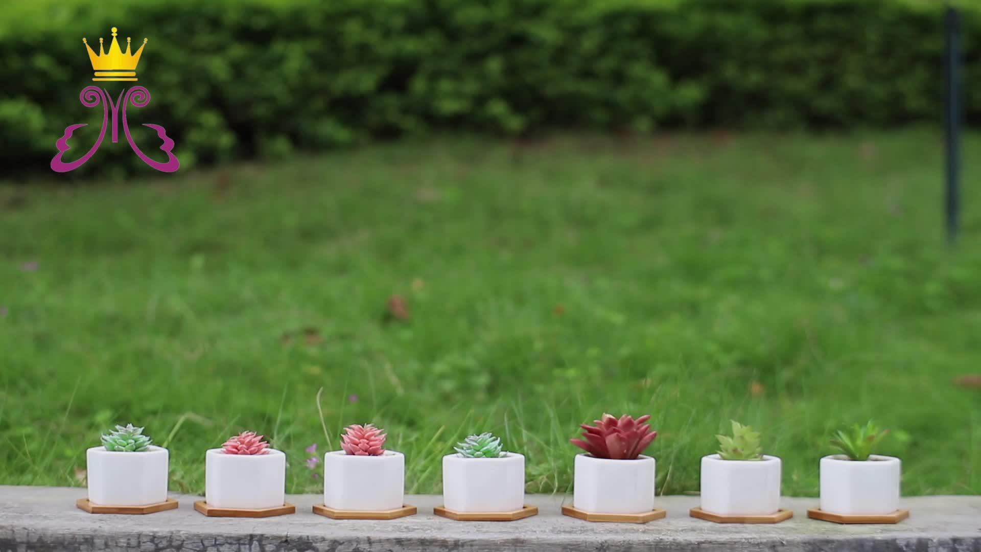 Witte Keramische Succulent Bloem Tuin Potten met Bamboe Lade Decoratie
