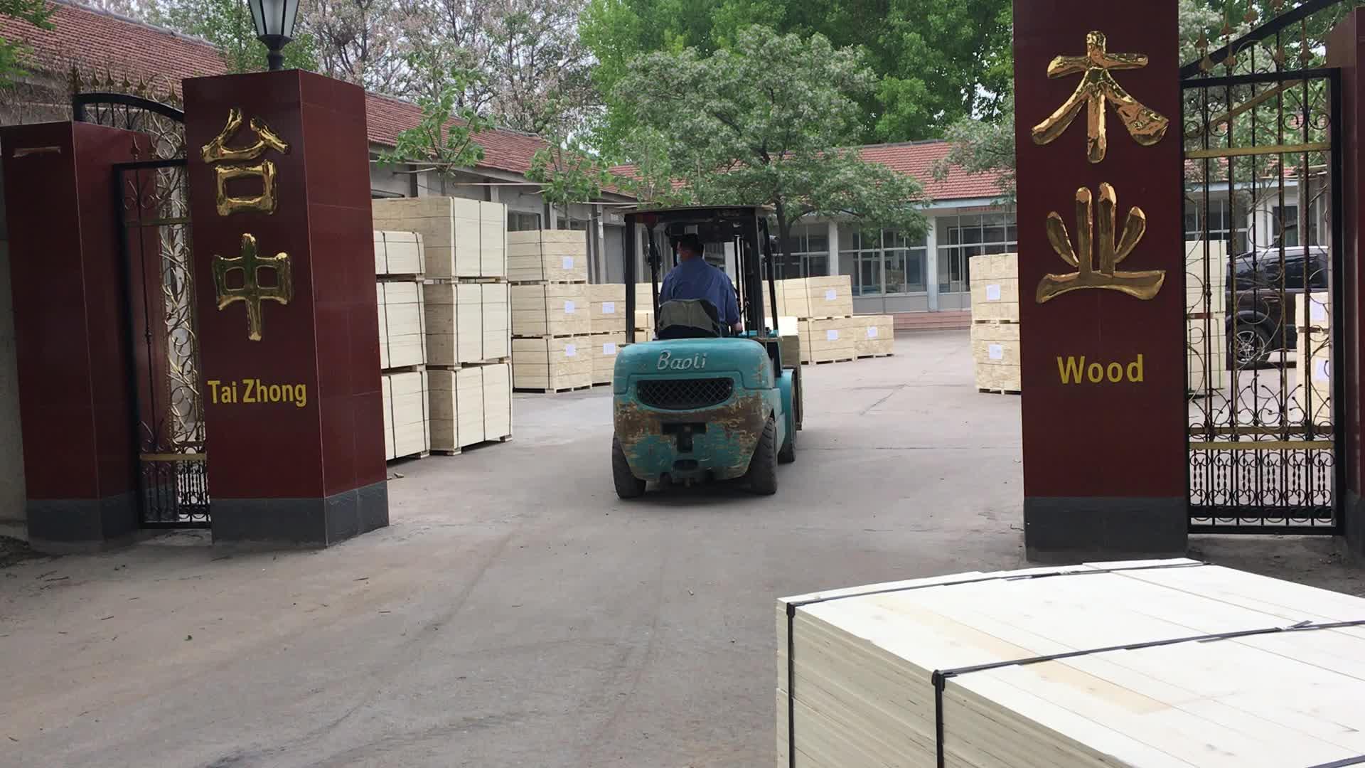 poplar LVL plywood