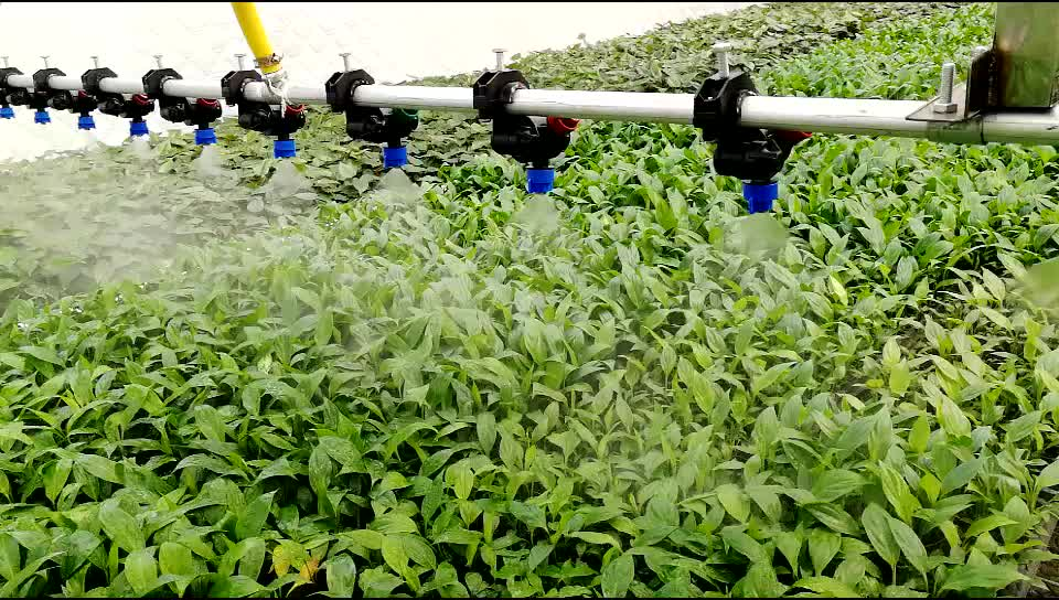 Agricultural spray nozzles with non-return valve