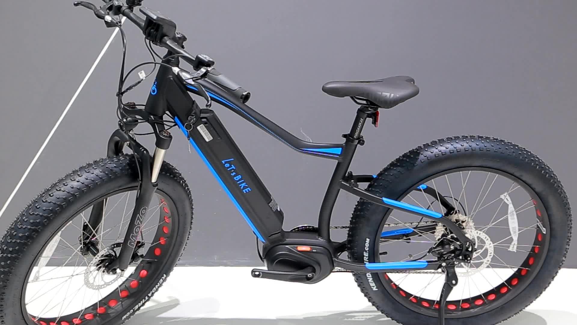 250W-750W bafang motor Fat Electric bike/ high quality fat E-bike with low price MTB bike