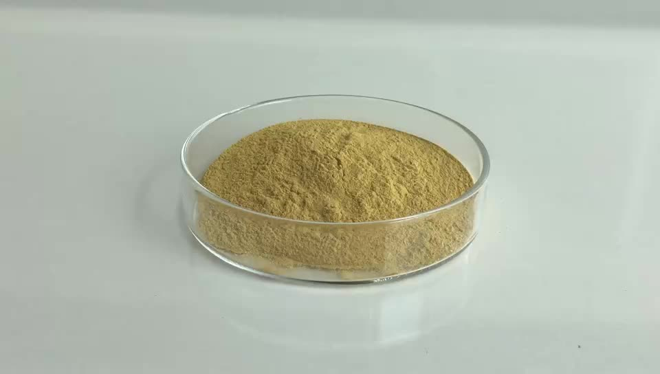 Competitive Price Ginger Root Extract Gingerol