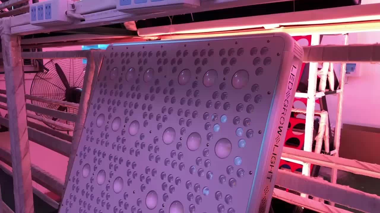 Hot Sale Grow light 2019 New Design 200w/600w/1000w/1600w Led Full Spectrum Grow Led Lights Special For Big Greenhouse Project