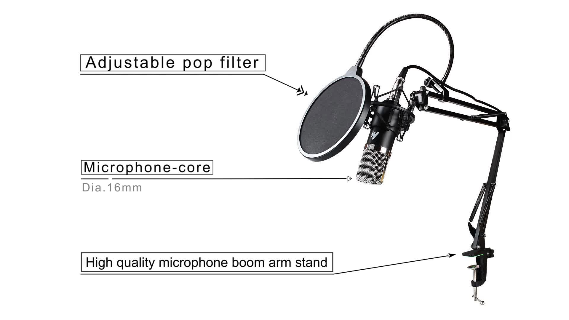Top quality voice recording podcasting studio condenser microphone