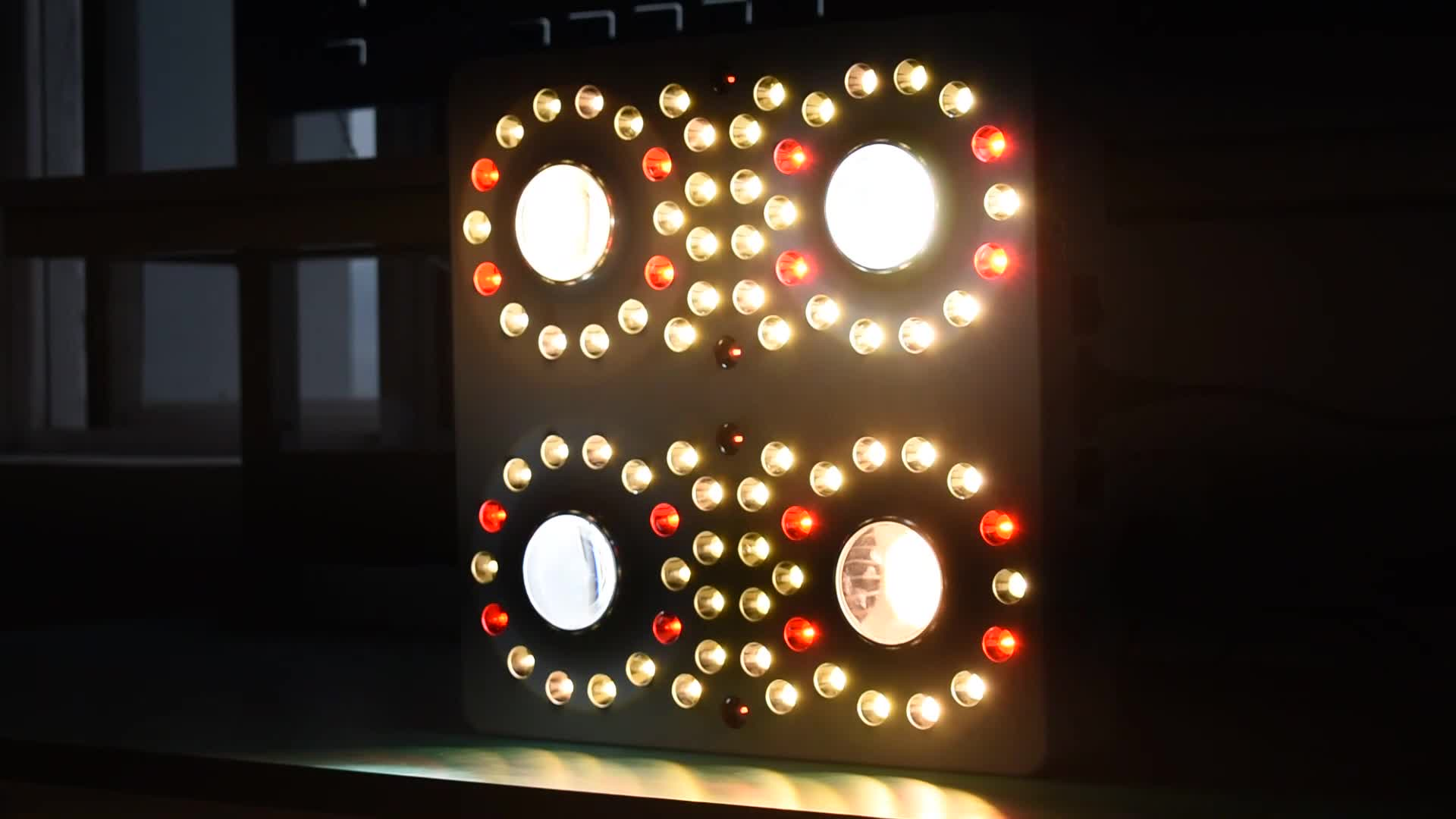 Nuevo hidropónica de espectro completo de la lámpara led cob led crecer luz de la planta 2000W Luz de planta de interior casa verde