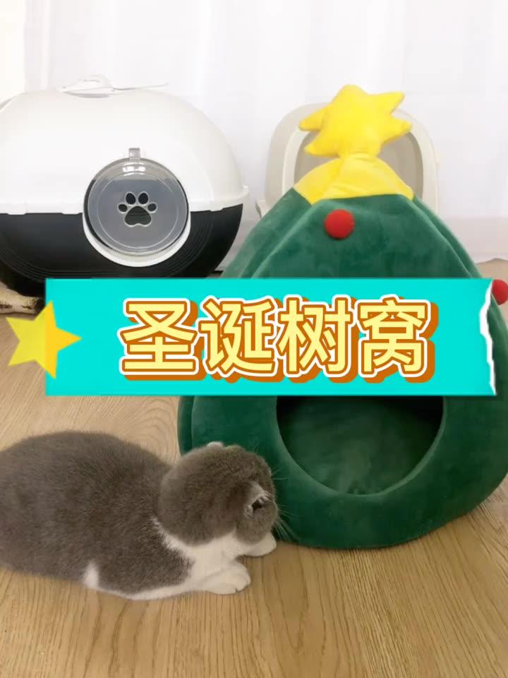 Warenkorb Bett Hund Oksford Ei Kissen Perros Cama Haustiere Betten Siver Kleine Couch Luxus Pet Donut Dispenser Wolle Kissen