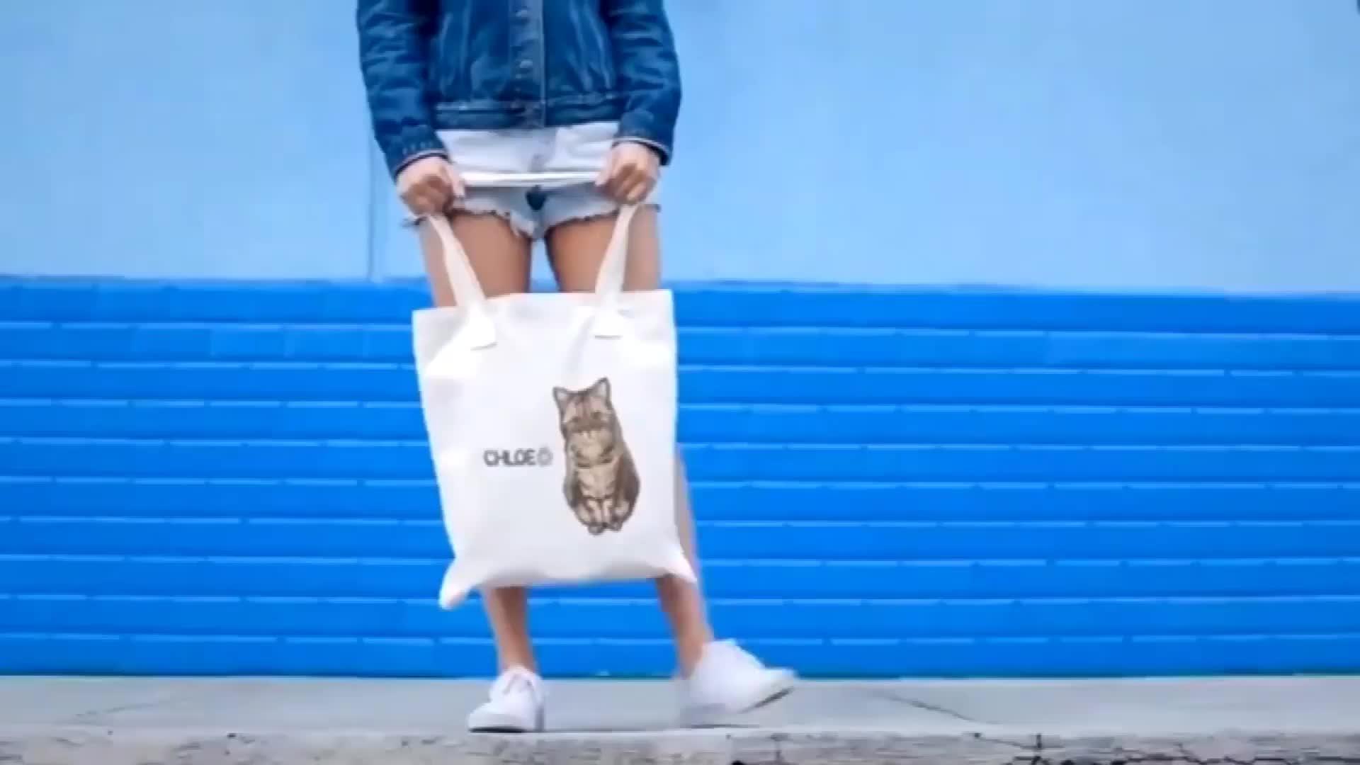 O pro serviço e o logotipo da qualidade imprimiram a sacola feita sob encomenda ambiental do algodão