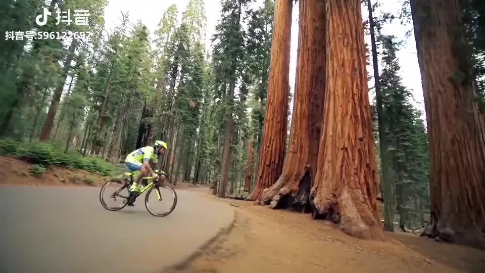 high quality mountain bike/26 inch bicicletas mountain bike bicycles/china mountain bike frame with best price