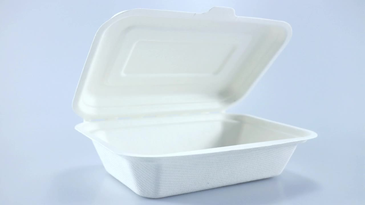 Biodegradable and Compostable Sugarcane Pulp 450ml Clamshell