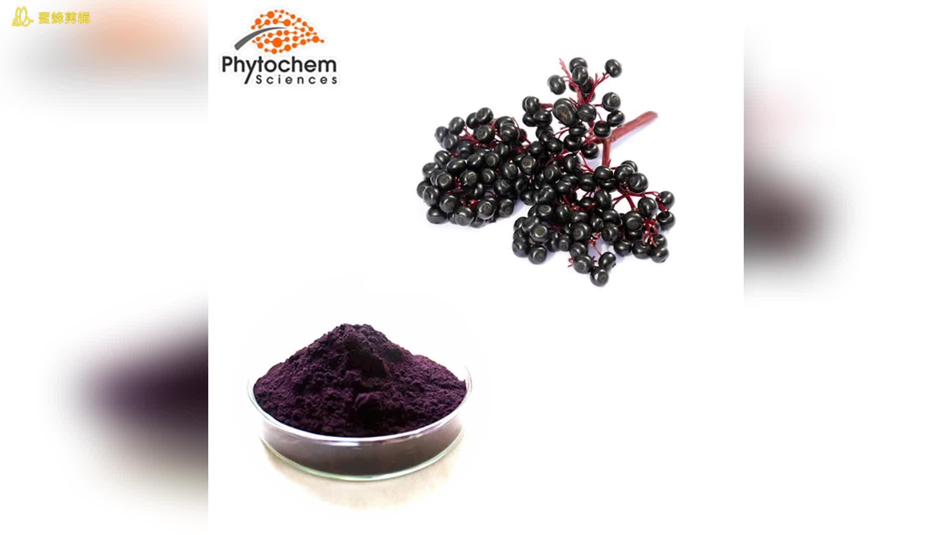 Vitamin C Zinc Nutrition Vegan Gummies Black Elderberry Extract
