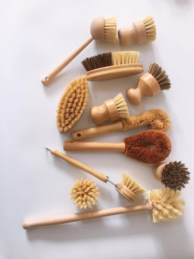 nature eco friendly palm dish brush professional tampico fiber bowl cleaning coconut brush with beech grip