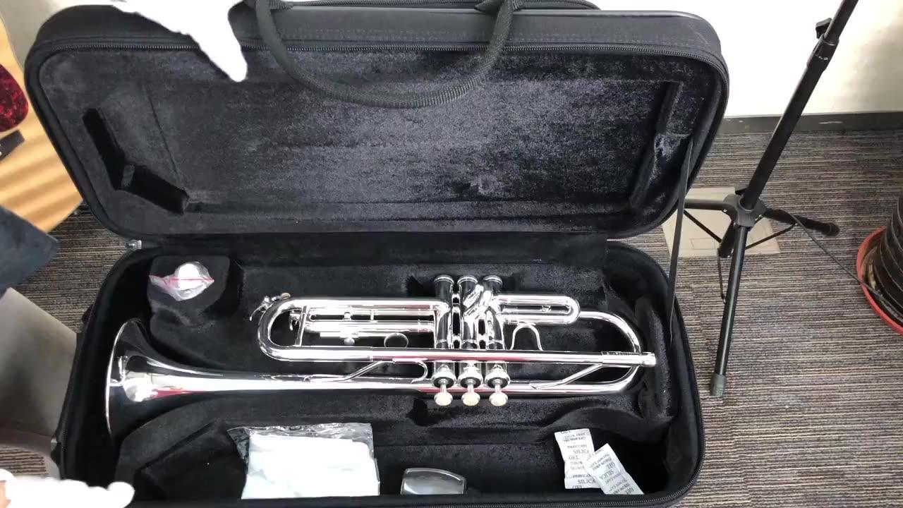 High End Trompetten In Bb Professionele Bach Messing Trompeta Messing Instrumenten Zilveren Trompet