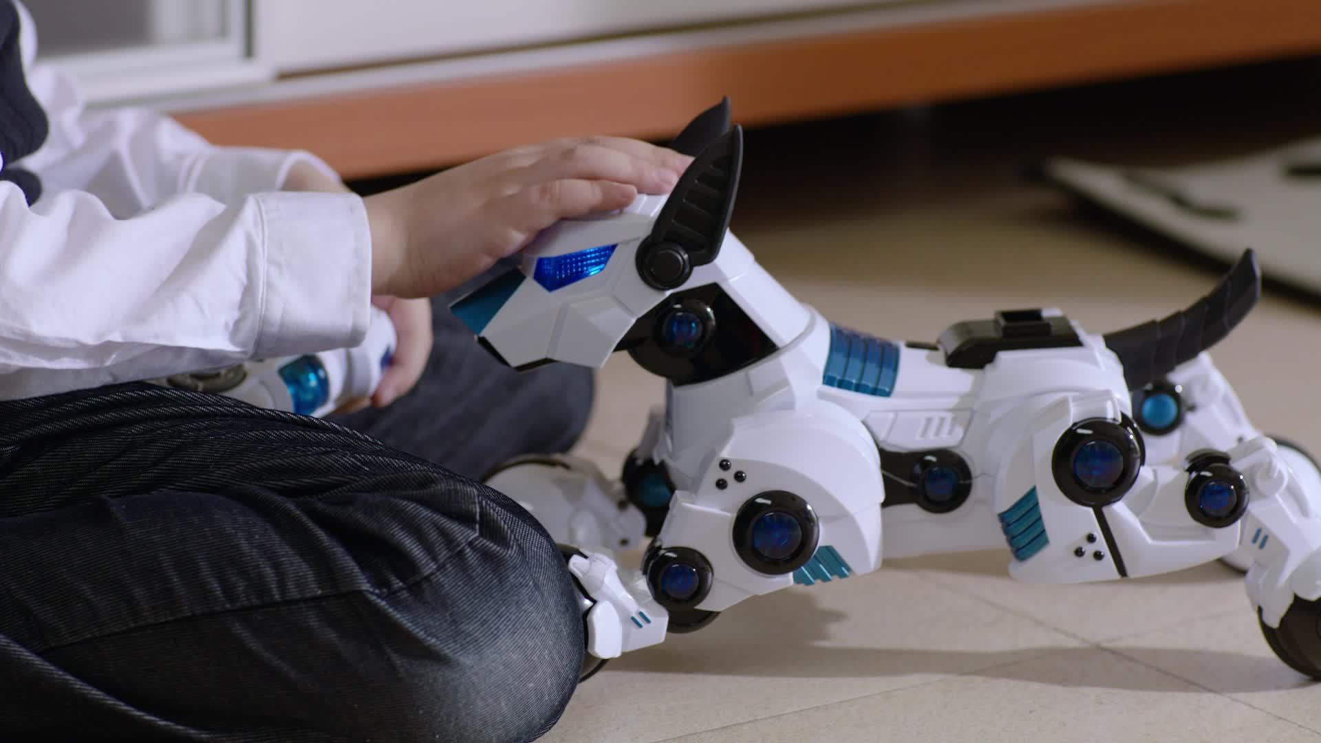 Rastar Electric Robot Smart Dog Toy For Kids