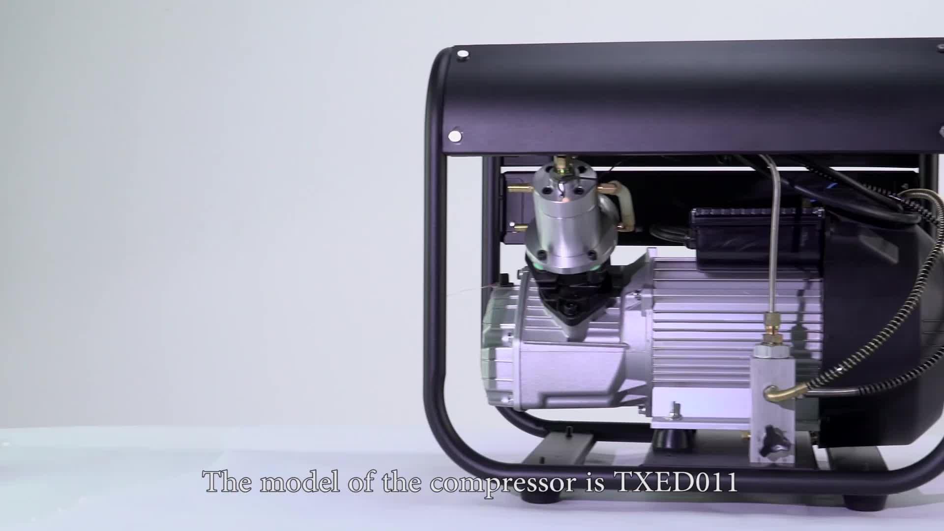 TXED011 300Bar 4500 Psi Pcp Compresseur Haute Pression Double Cylindre Pompe /À Air pour Air Fusil Paintball R/éservoir 220V TUXING