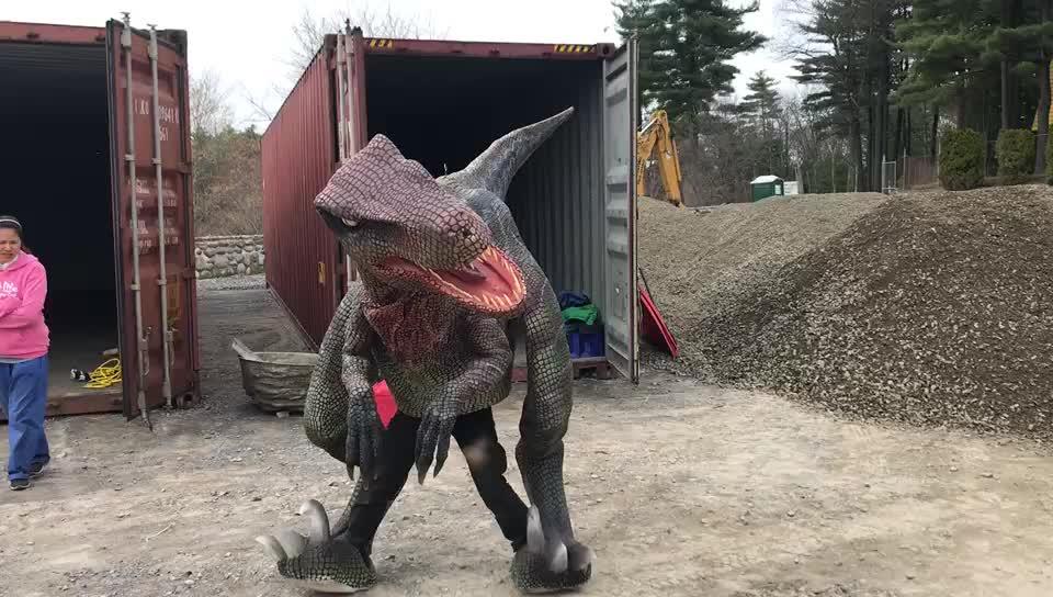 HLT דקורטיבי דינוזאור animatronic דינוזאור הליכה דינוזאור נרתיק