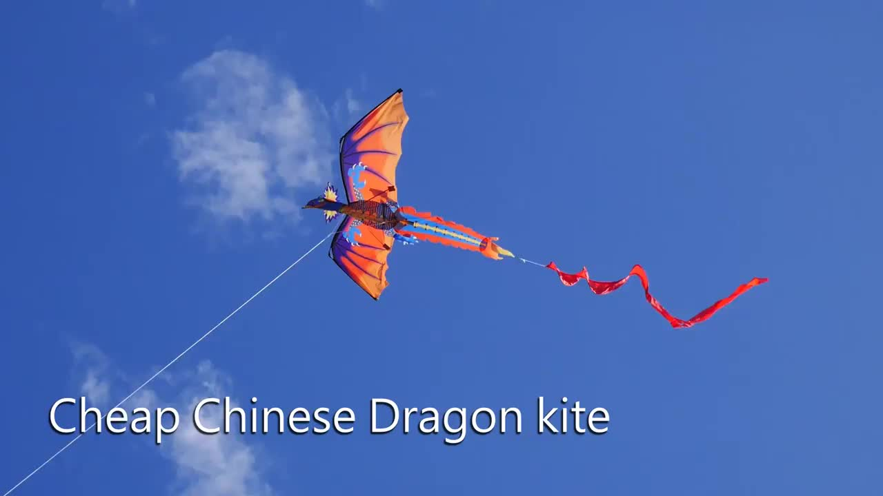 new arrival 3d dragon kite