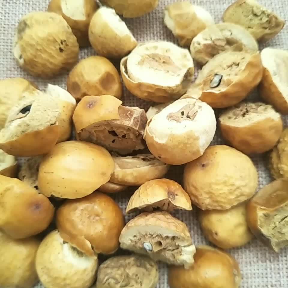 Chuan lian zi Wholesale Chinese Traditional medicine natural supply fructus toosendan