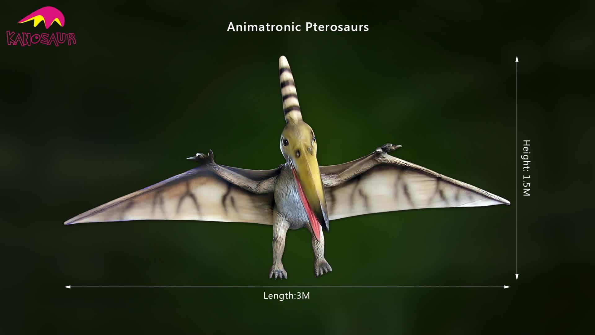 KANO-017 Museum Decoration animatronic Pterosaurs