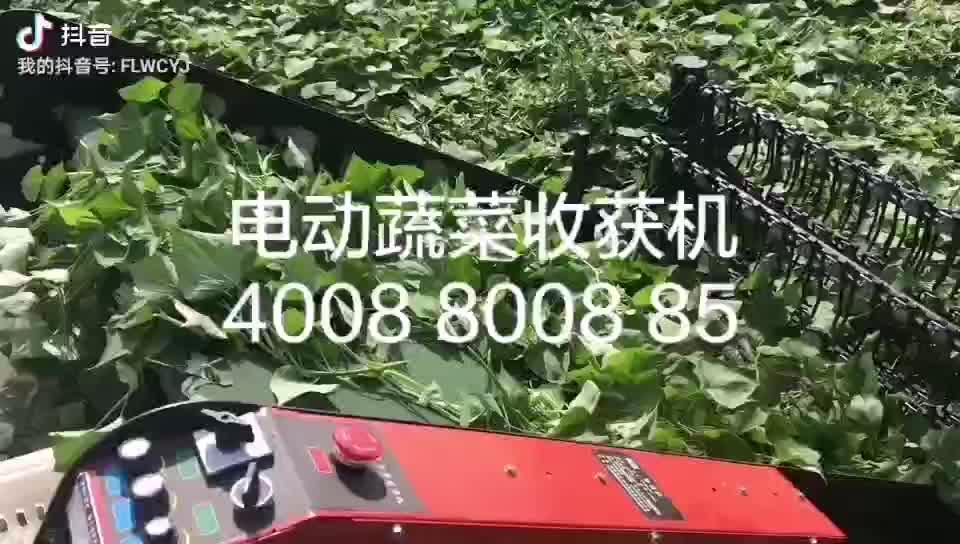 FLW Vegetable  leafy  walking  type Harvester