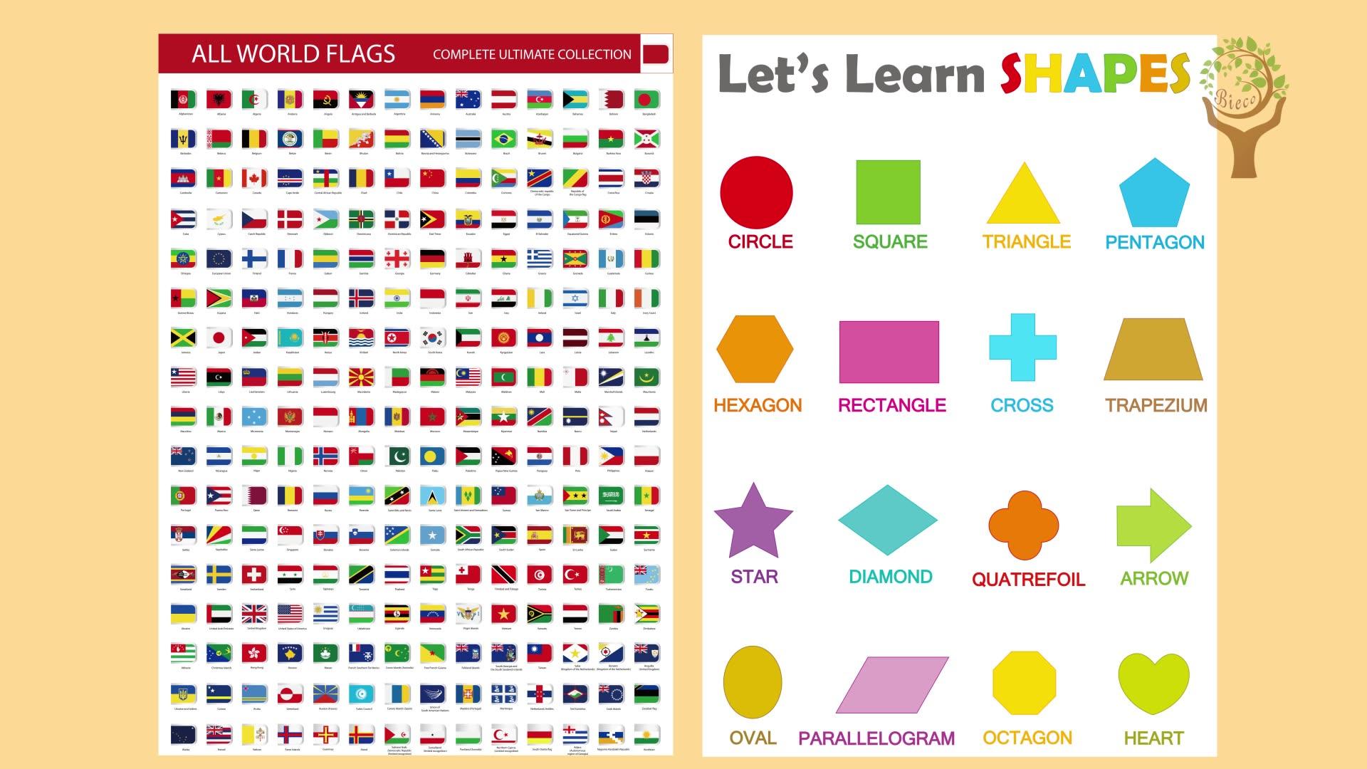 कस्टम रंग चार्ट पूरी तरह से टुकड़े टुकड़े में टिकाऊ सामग्री लुढ़का संरक्षण पोस्टर आस्तीन आकार सीखने पोस्टर