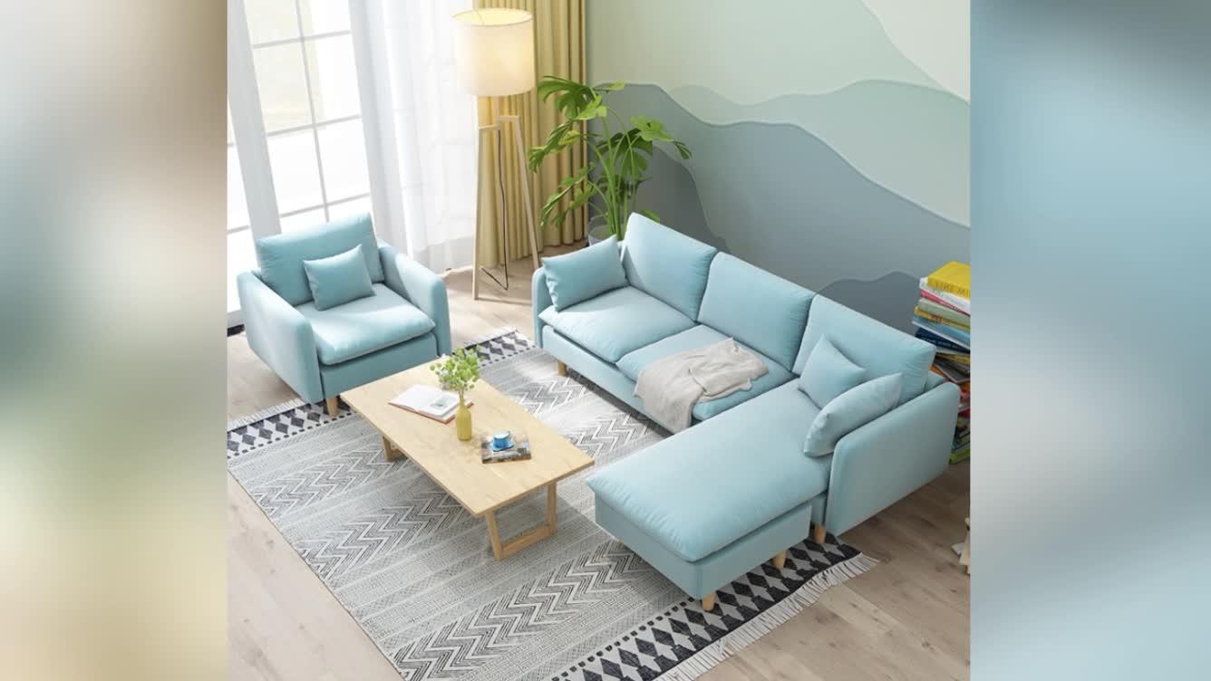 Nordic bucolic rental room apartment love sofa small room use