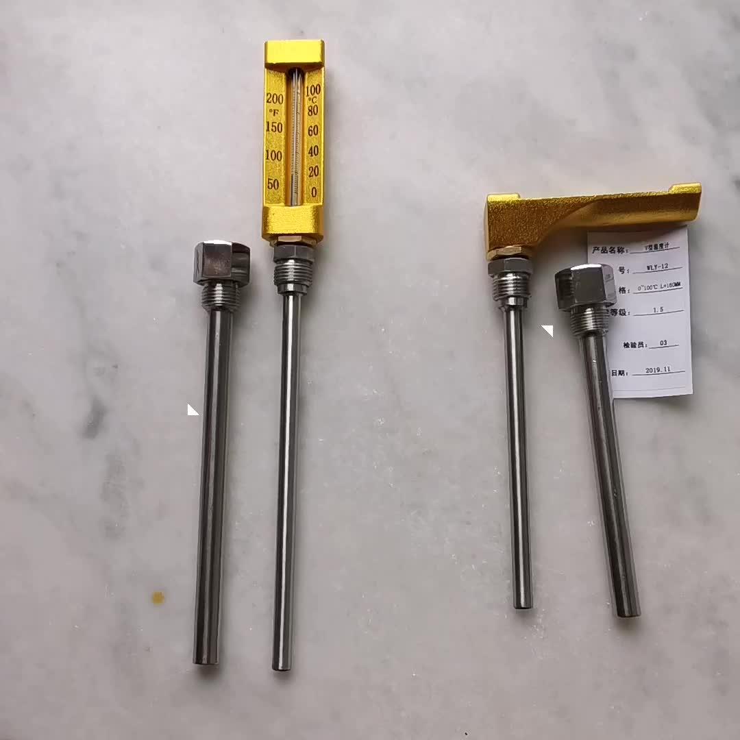 Sıvı kabı termometre cam deniz termometresi metal kabuk ile