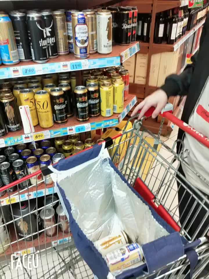Custom Logo Non-woven Insulated Cooler Supermarket Shopping Trolley Cart Bag