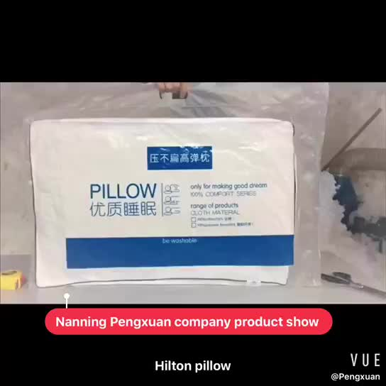 Natural goose down pillow with competitive price