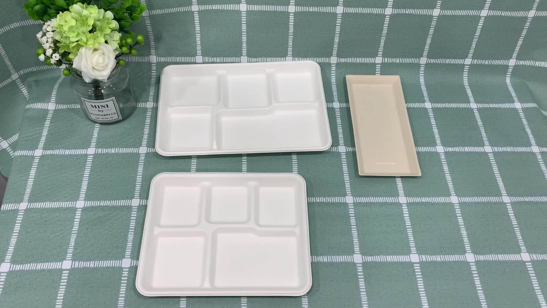 White Pulp sugarcane Moulded Disposable Paper Boat dinnerware sets Tray