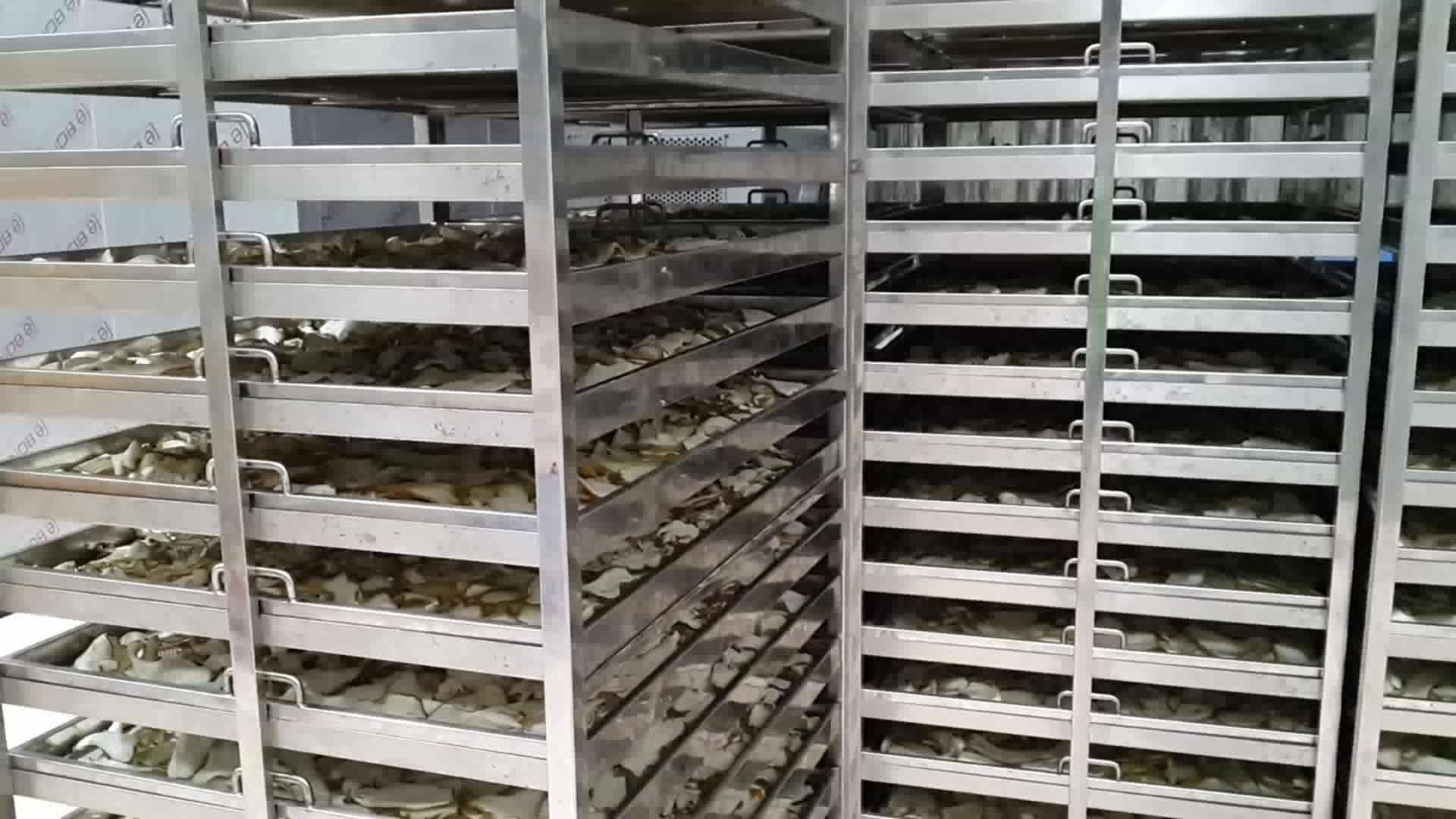 Lúa mì cau muối hạt hạt tiêu đen chalk chuối chip trầu nut apricot máy sấy công nghiệp dehydrator máy