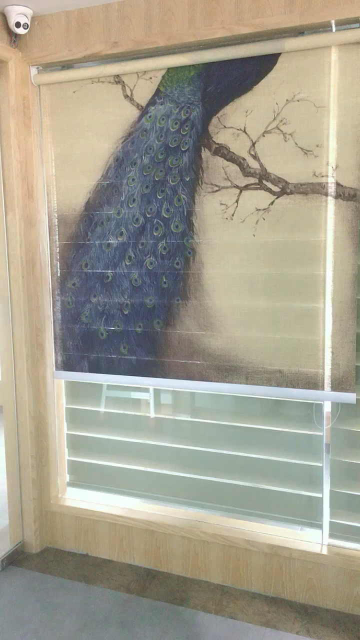 Haoyan make quality Japanese style paper blinds