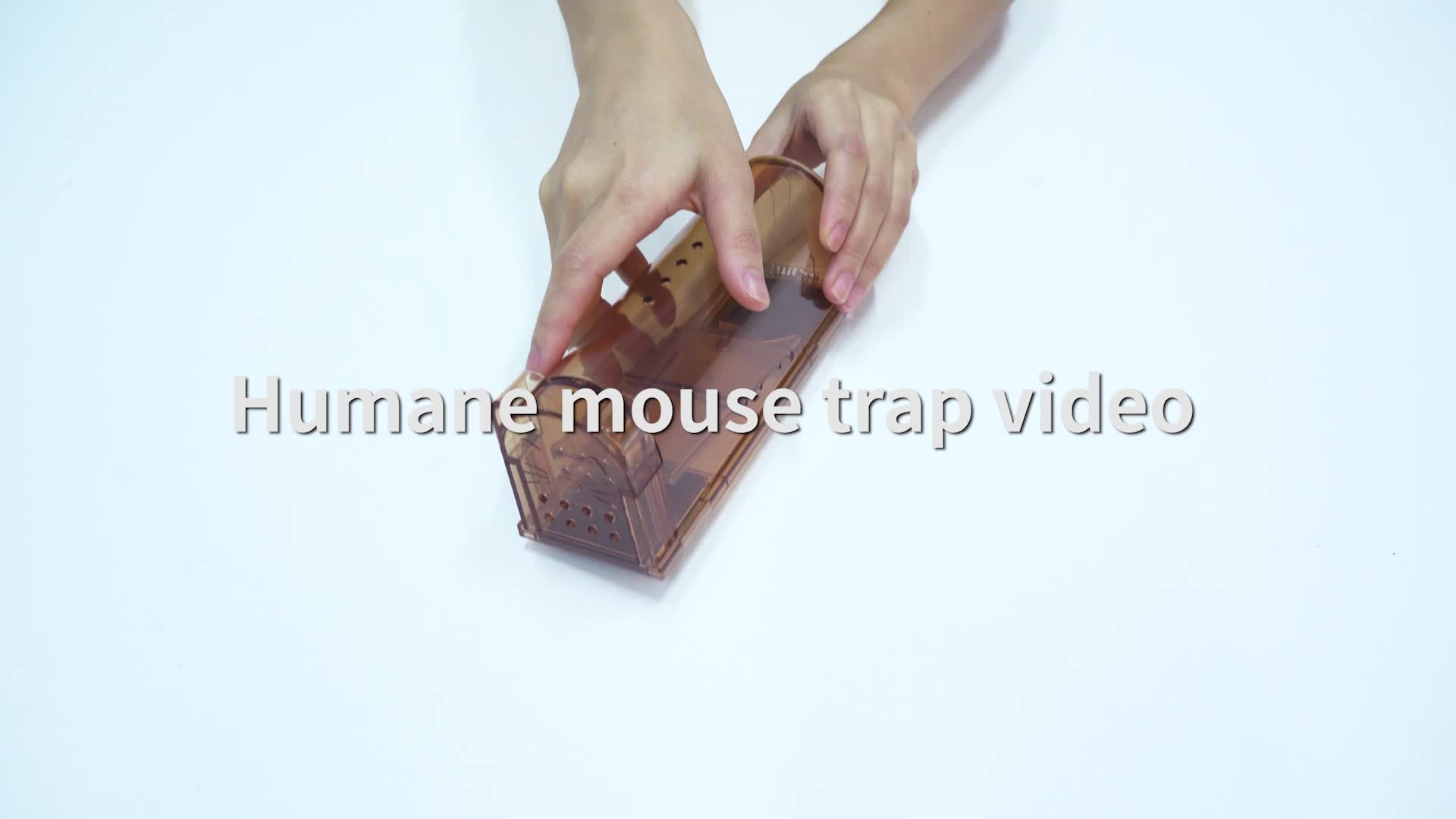 Industrial Plastic Automatic Rat And Mouse Trap Cage Live Small Mouse Trap