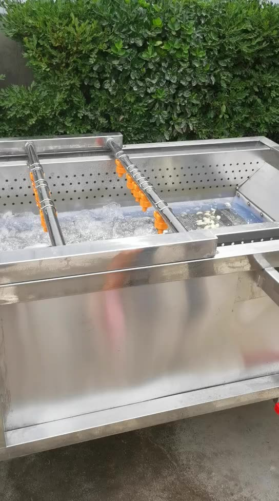 Industrial Washing Machine Fruit And Vegetable Cleaner Washer Bubble Washing Machine