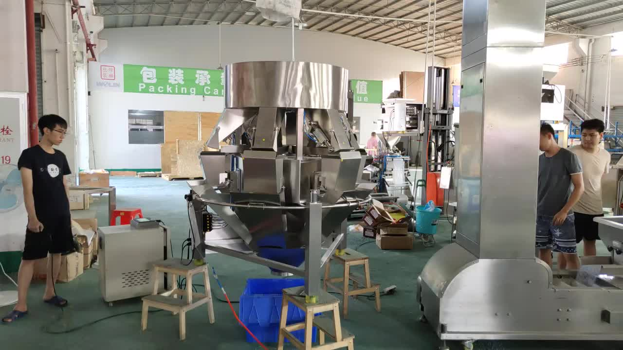 High performance multihead 6head 8L linear weighing scale packaging machine for salt sugar rice seeds cereals