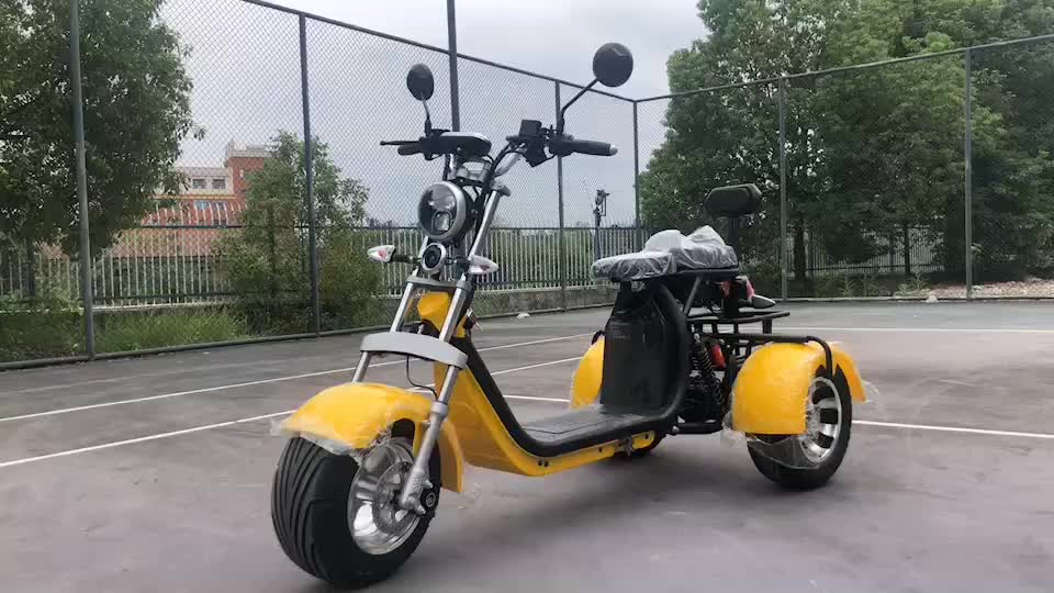 Holland Warehouse Stock 2000W 3 wheel scooter with portable battery golf bag holder