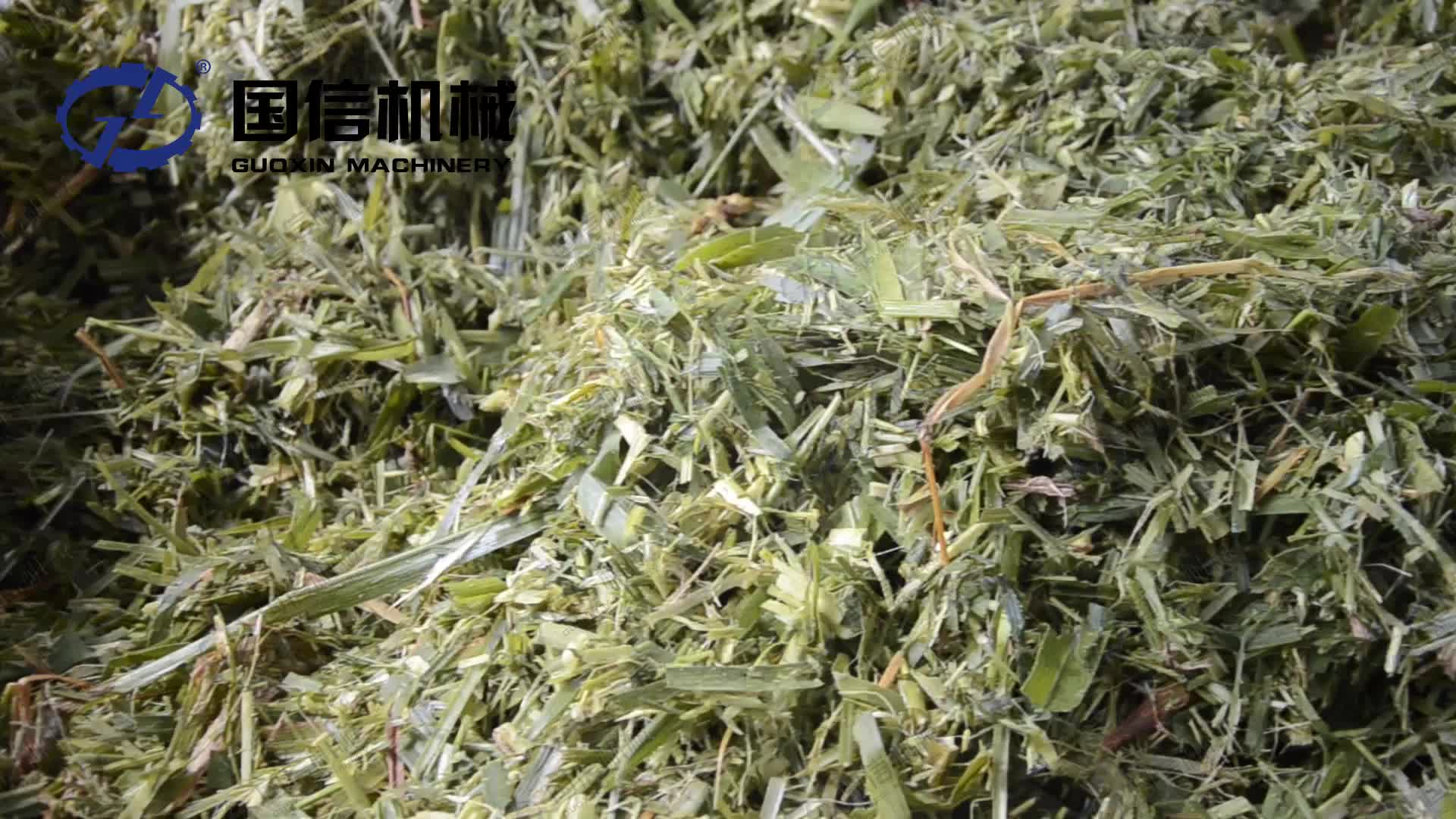 Best Price Continuous CBD Extraction Mesh Belt Hemp Biomass Dryer Machine