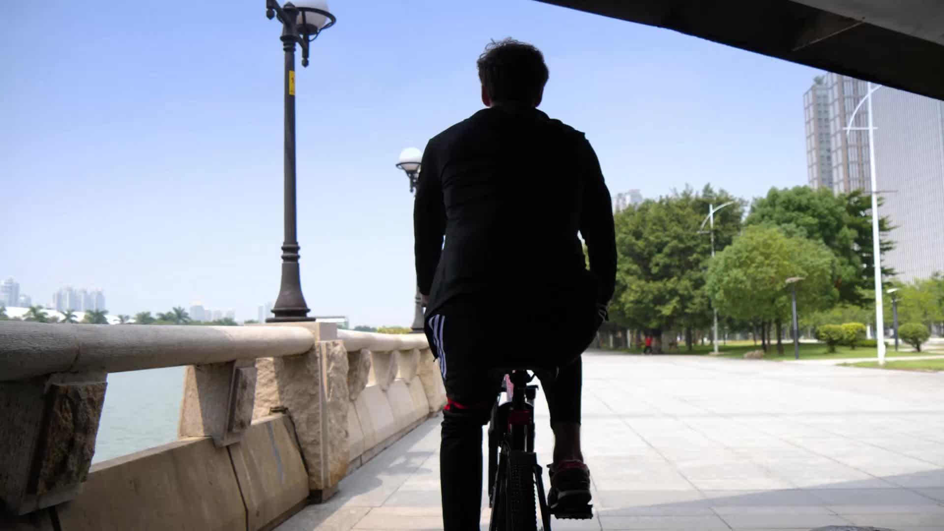 Bicicleta elétrica velocidade 48 21 V 350W ebike dobrar bateria de lítio bicicleta elétrica bicicleta elétrica a partir de china