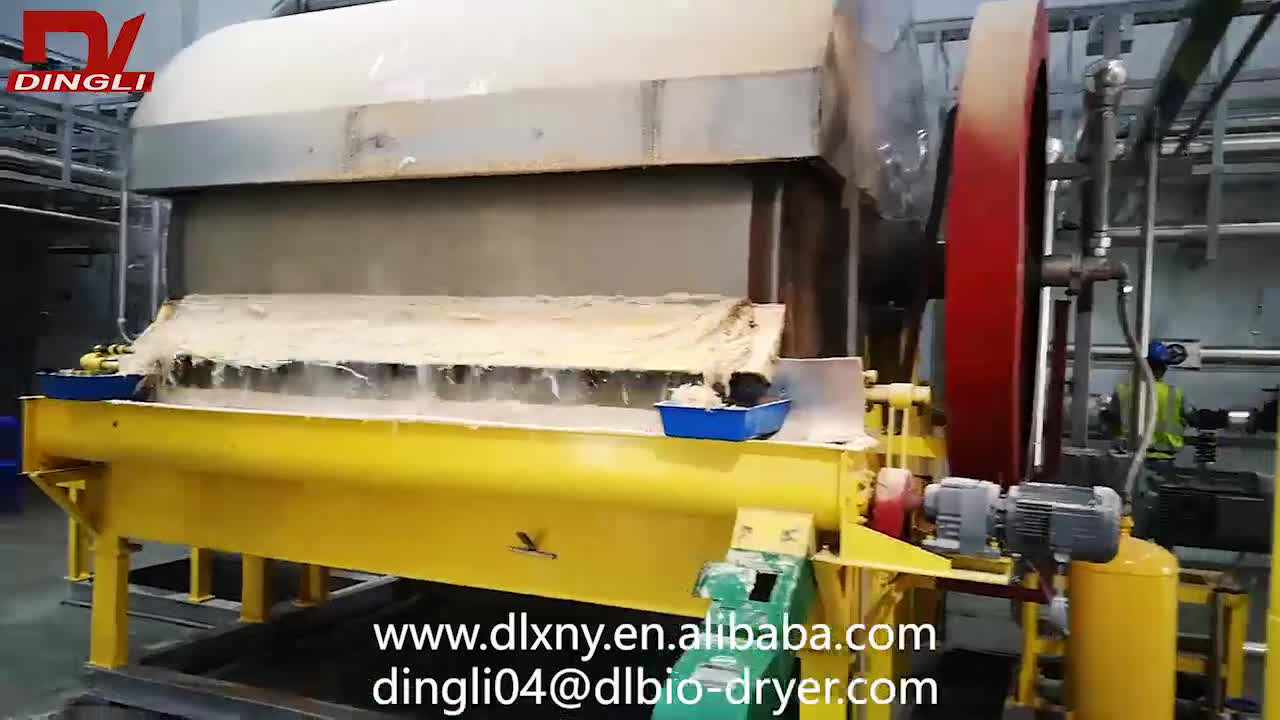 Dingli Small Single Layer Beer Brewers Yeast Dryer for Making Animal Feed Vietnam