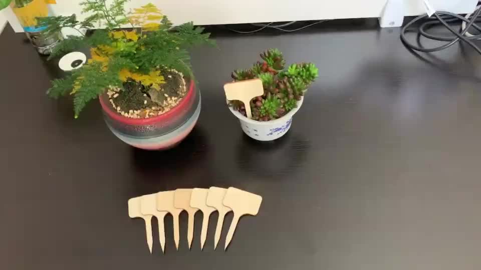 40pcs eco-friendly t-type bamboo garden tags markers plant signs flag sticks labels with a marker pen seed potted herbs flowers
