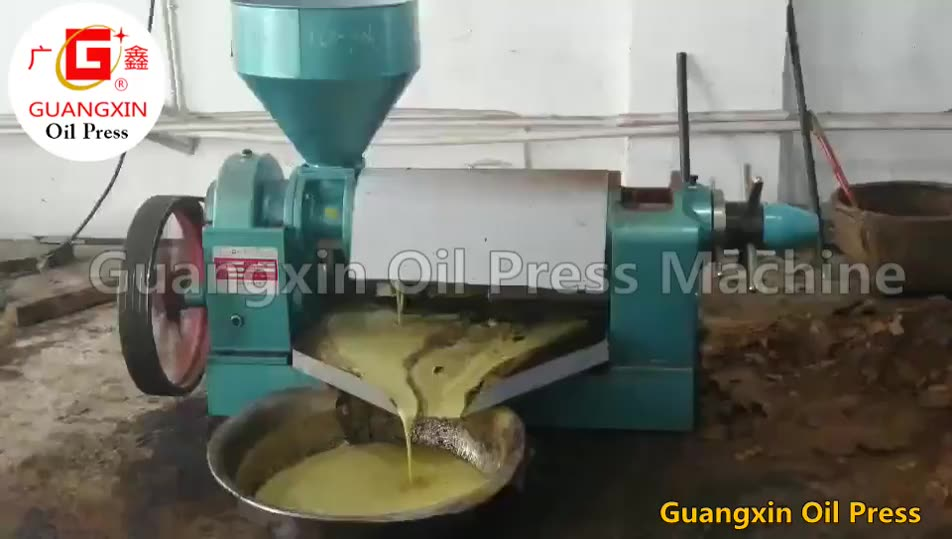 6.5TPD Cold Pressing Vegetable Oil Pressed Price Soybean Oil Press Machine