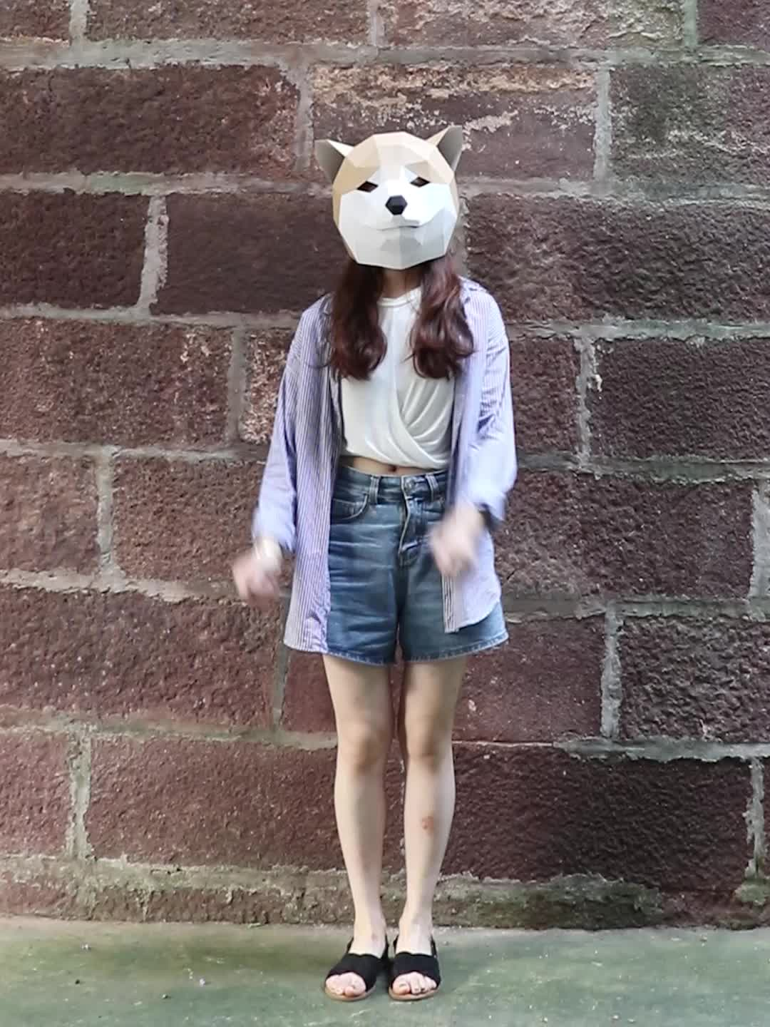 Competitive price Akita dog head mask 3d paper mask to make your own mask kit