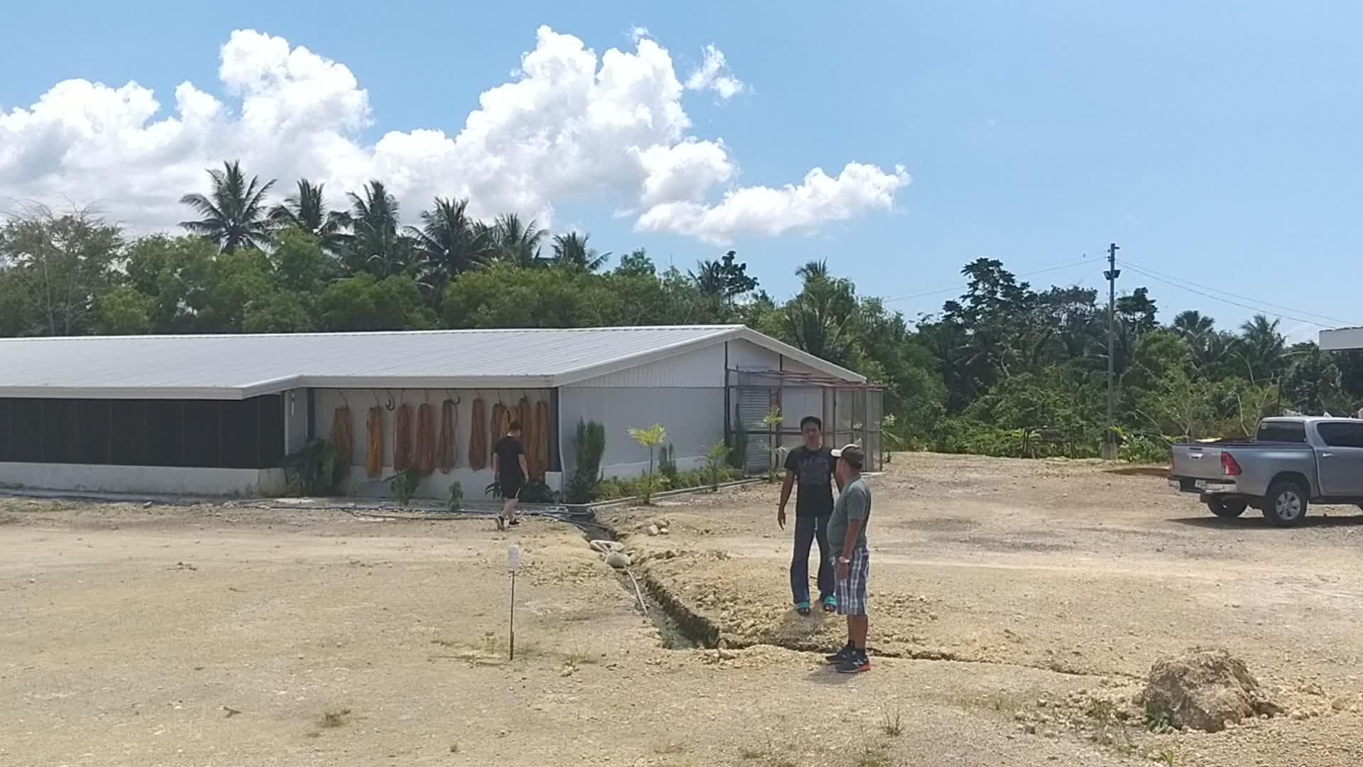 Prefabricated บ้านไก่/โครงสร้างเหล็กฟาร์ม shed พร้อมอุปกรณ์