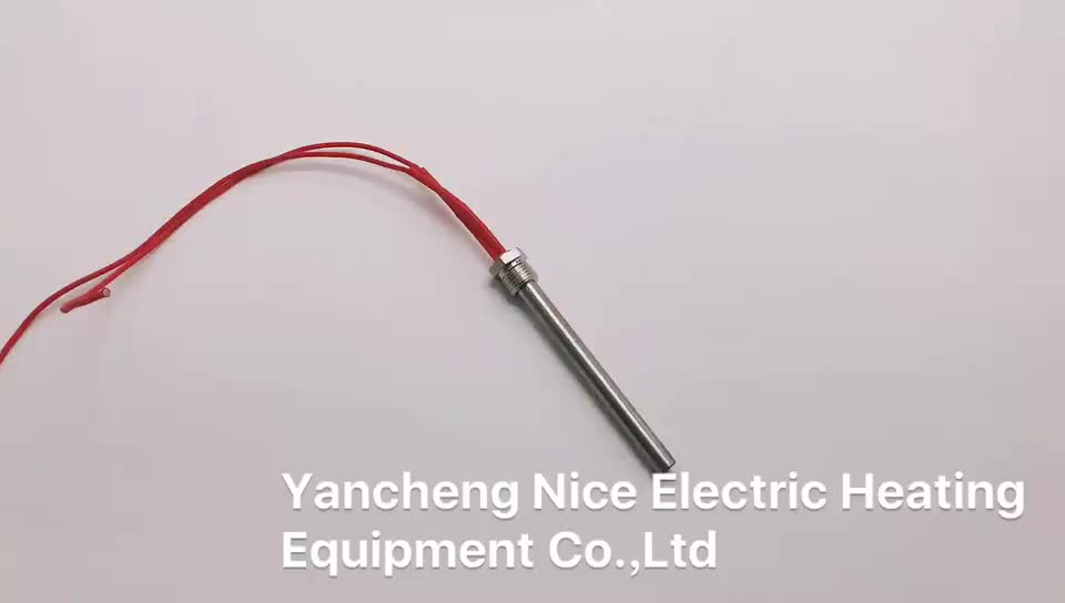 220v 100w water heating rod element