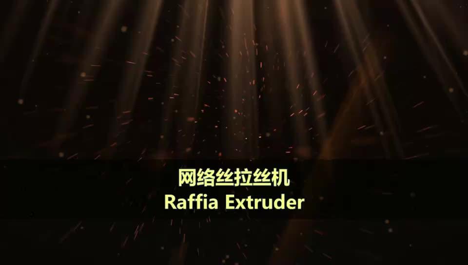 Raffia Extruder/Split-Film Extruder Touw Making Machine