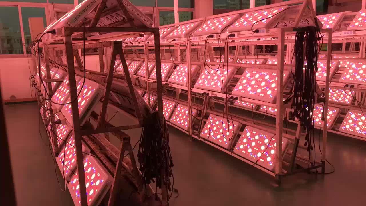 200% ausgänge Top 1 PPFD 300-600-1200watt COB LED wachsen licht bar led wachsen lichter mit uv far red 3000 k 5000 k gesamte spektrum
